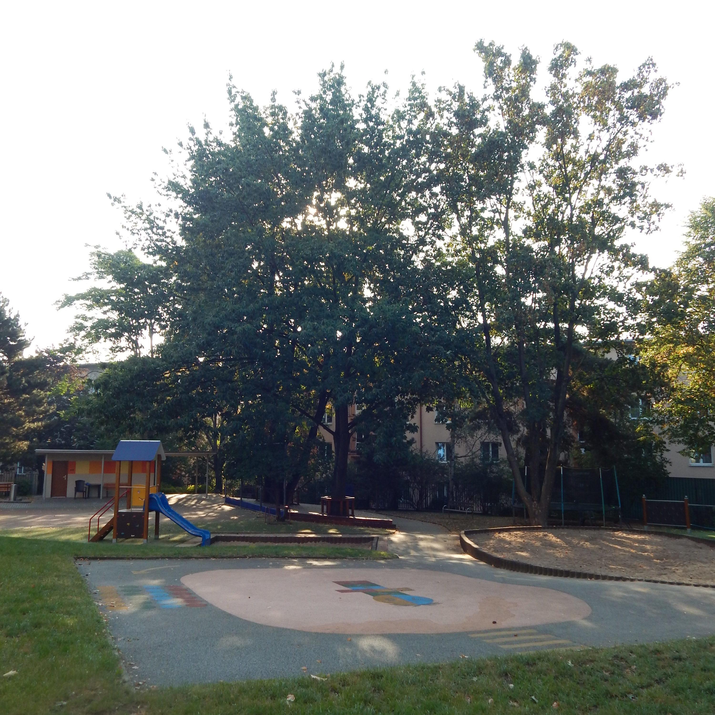 http://skolypraha3.cz/wp-content/uploads/2016/09/MŠ-NA-BALKÁNĚ-8-e1474467884955.jpg