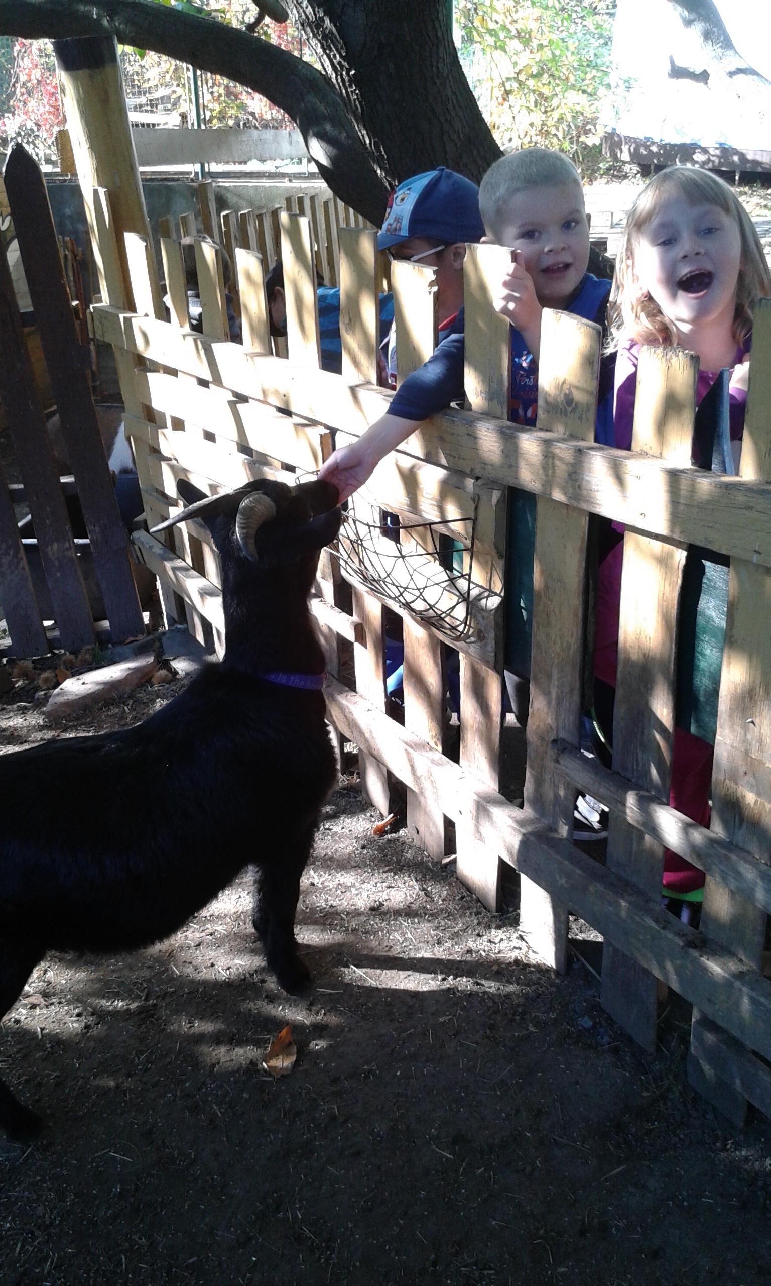 Návštěva integračního centra Zahrada – dětmi z Milíčova domu