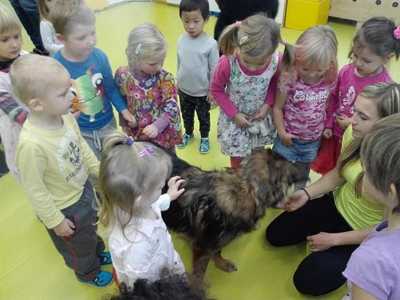 Asistenční psi v MŠ Jaroslava Seiferta