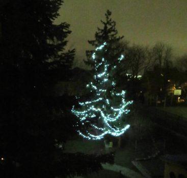 """""""Rozsvícení vánočního stromečku na Lobkovičáku"""""""