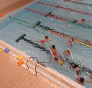 Plavání v MŠ J. Seiferta